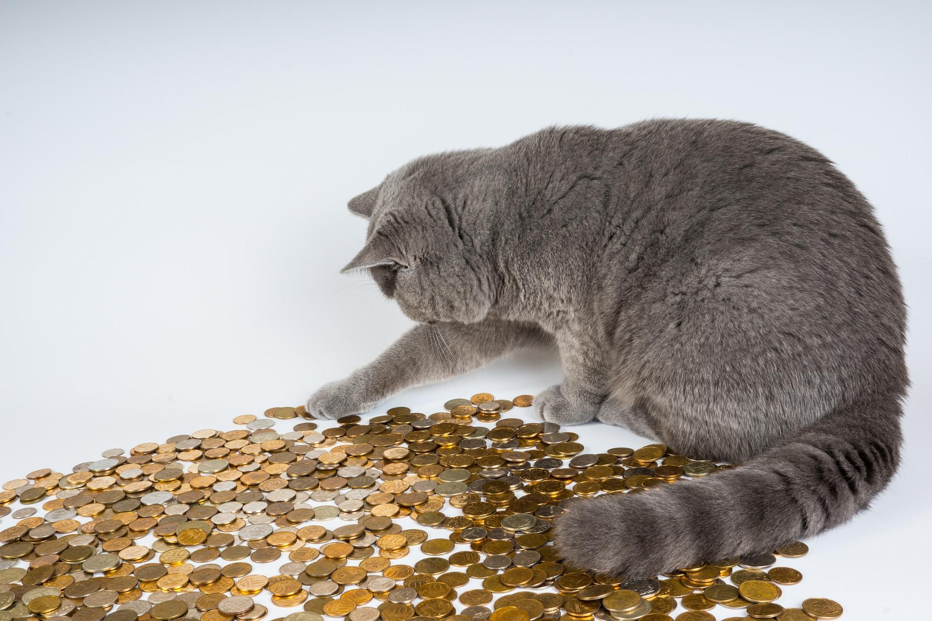 1000人規模の調査からわかった、「億万長者になるための8箇条」。