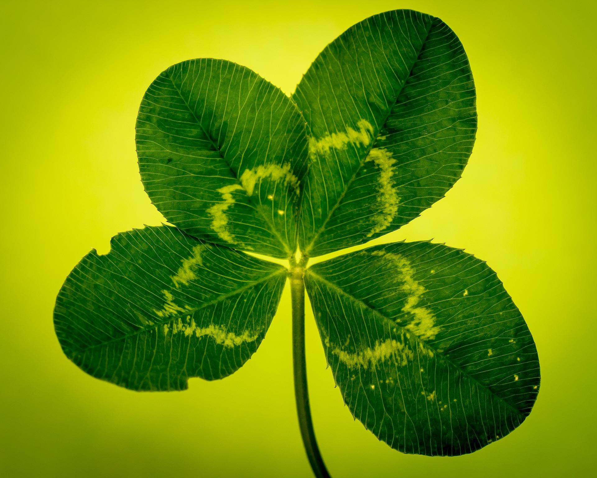 不運を「幸運な思い出」に変える、奇跡の方法。
